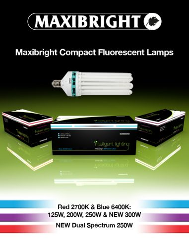Maxibright CFL lamps for horticultural lighting systems