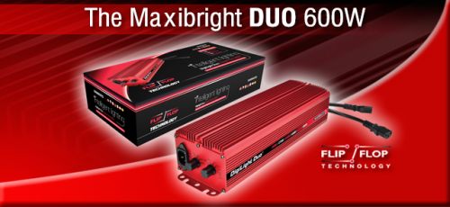 Maxibright Duo Digital Power Pack with Flip-Flop Technology
