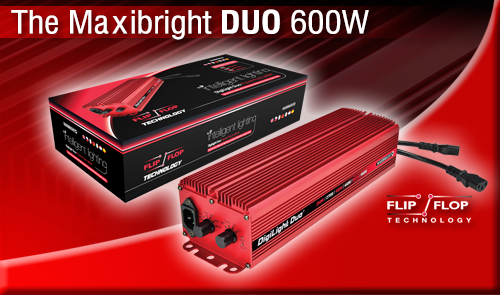 Maxibright DUO Power Pack with Flip/Flop Technology