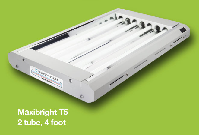 Maxibright T5 2 Tube 4 ft Horticultural Lights